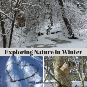 e-workshops: Exploring Nature in Winter
