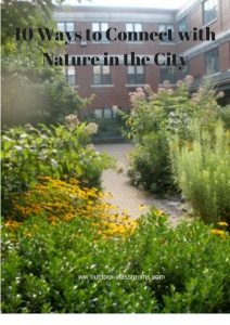 10 Ways to Connect with Nature in the City