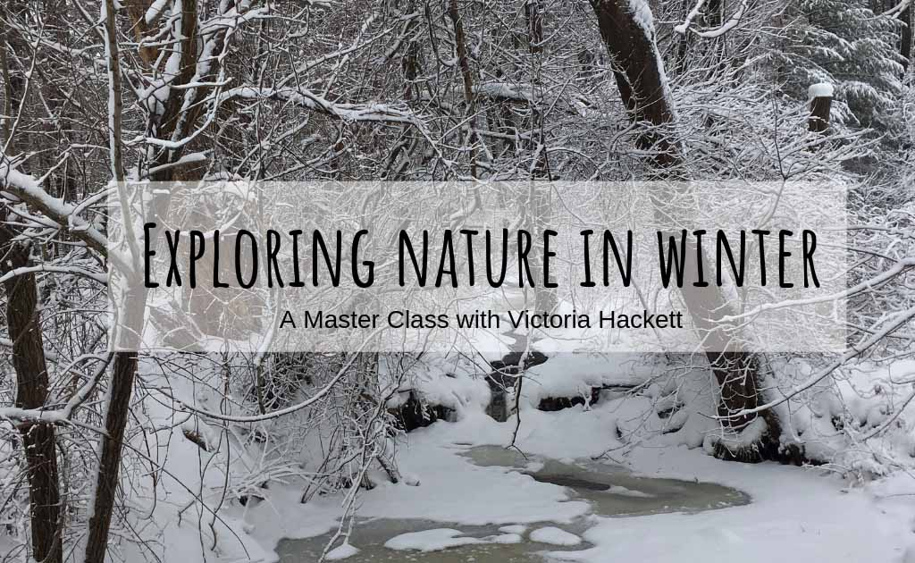 exploring-nature-in-winter