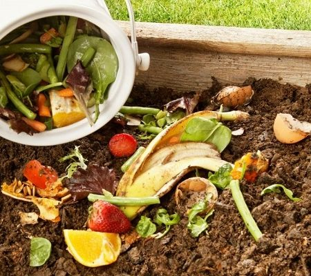 COMPOST 101: Get Started